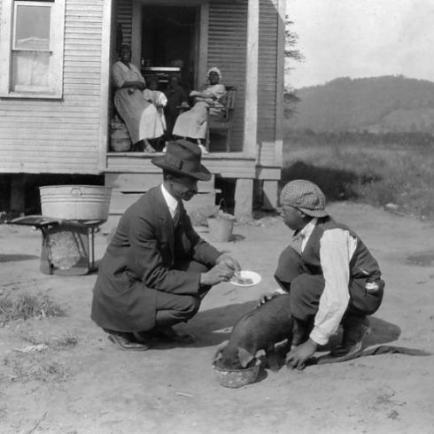 BOY FEEDING PIG, 1921. George Cox, 13 year old African American boy has just joined the 4 H Club