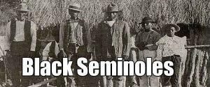 black seminole banner