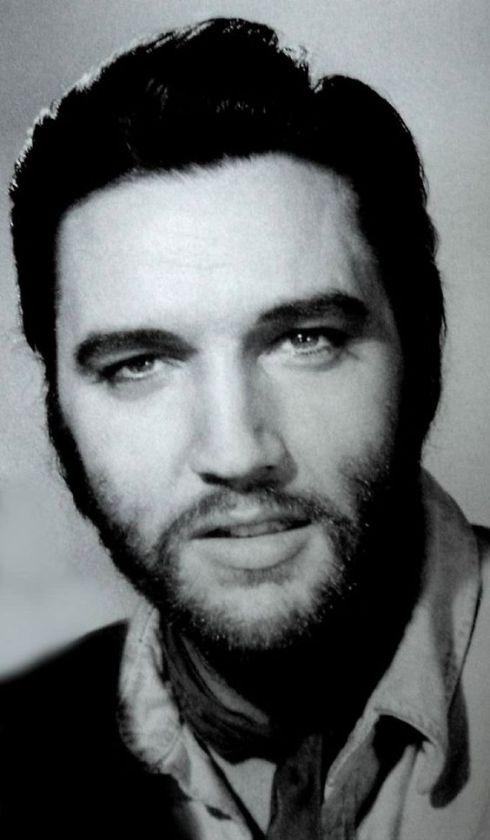 Elvis V